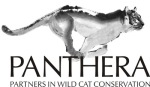 Panthera_new logo_medium resolution