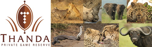 Thanda Collage