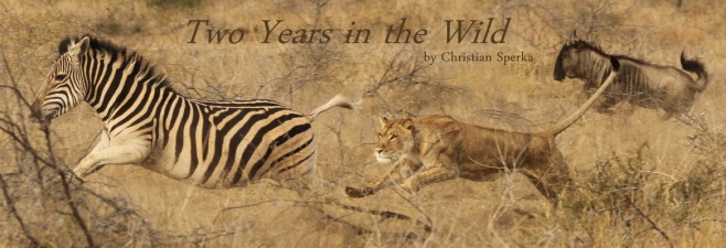 Two Years in the Wild - FULL SIZE
