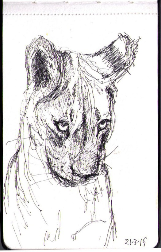 Drawing of a little lion that just woke up in ballpoint pen
