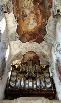 * The organ ...