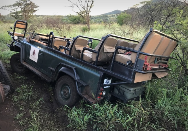And I slipped off the road on a game drive after heavy rains, but Bheki - my tracker - and I got the vehicle back onto the road ...