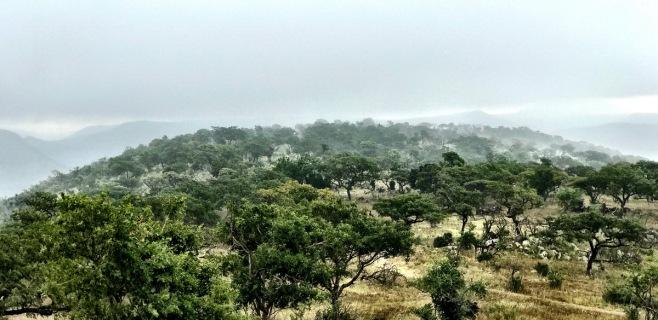 Rain over the Pakamisa mountains ...