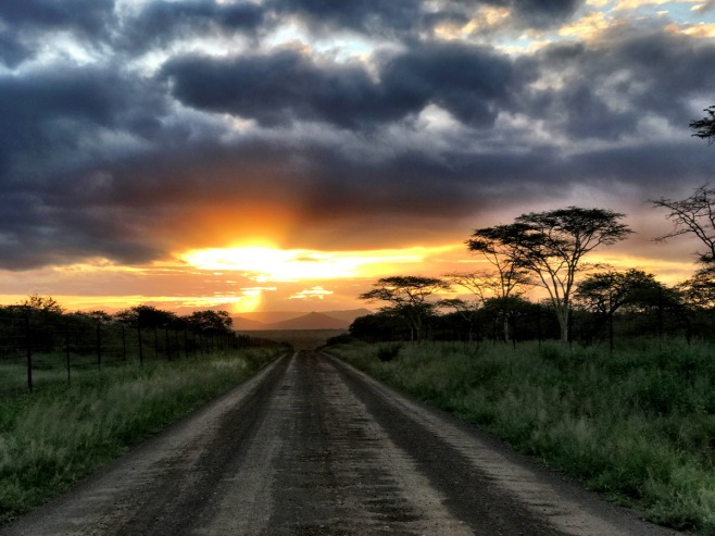 ... and finally a dramatic sky over Thanda as I returned after travelling for almost 2,000 kilomteres ...